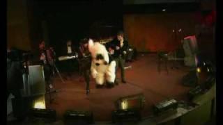 Любаша - Собака