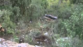 valparai bus accident xvid