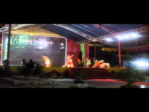 Parade Tari Daerah Kepri 2014 Part3 video