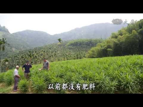 台綜-農夫與他的田-20141020 中寮蕉農的故事