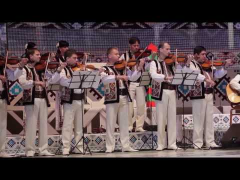 Ion Paladi Concert - parte II