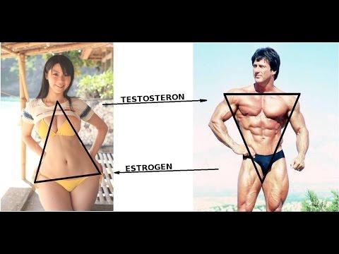 testosteron-u-zhenshin-seksualnost
