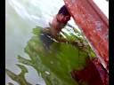 pesca de cerco artesanal mejillones panguero estrella