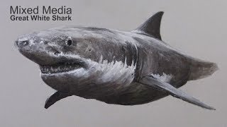 How to Draw a Shark - Mixed Media Drawing Lesson