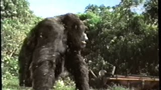 Mighty Joe Young (1998) Teaser (VHS Capture)