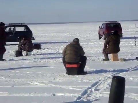ловля судака в боровом
