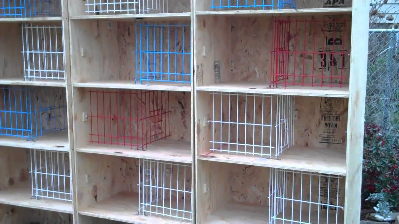 Breeding Boxes For Pigeons Breeding Boxes