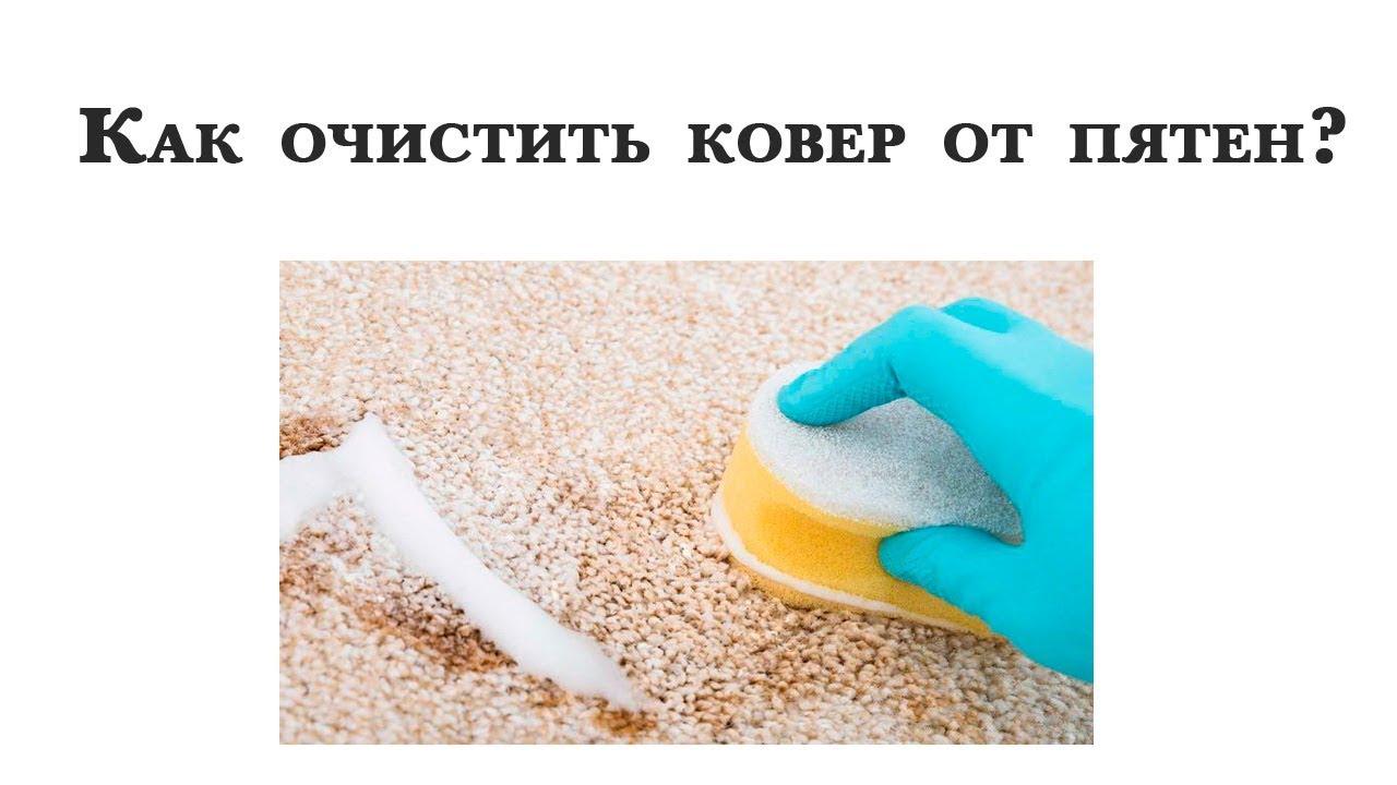 Как уксусом почистить ковры в домашних условиях 904