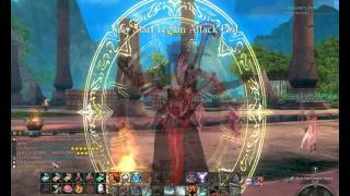 Aion Daevanion Set - Q1 The first step to becoming a protector