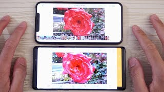 iPhone XS Max vs Samsung Note 9 - Camera Test!