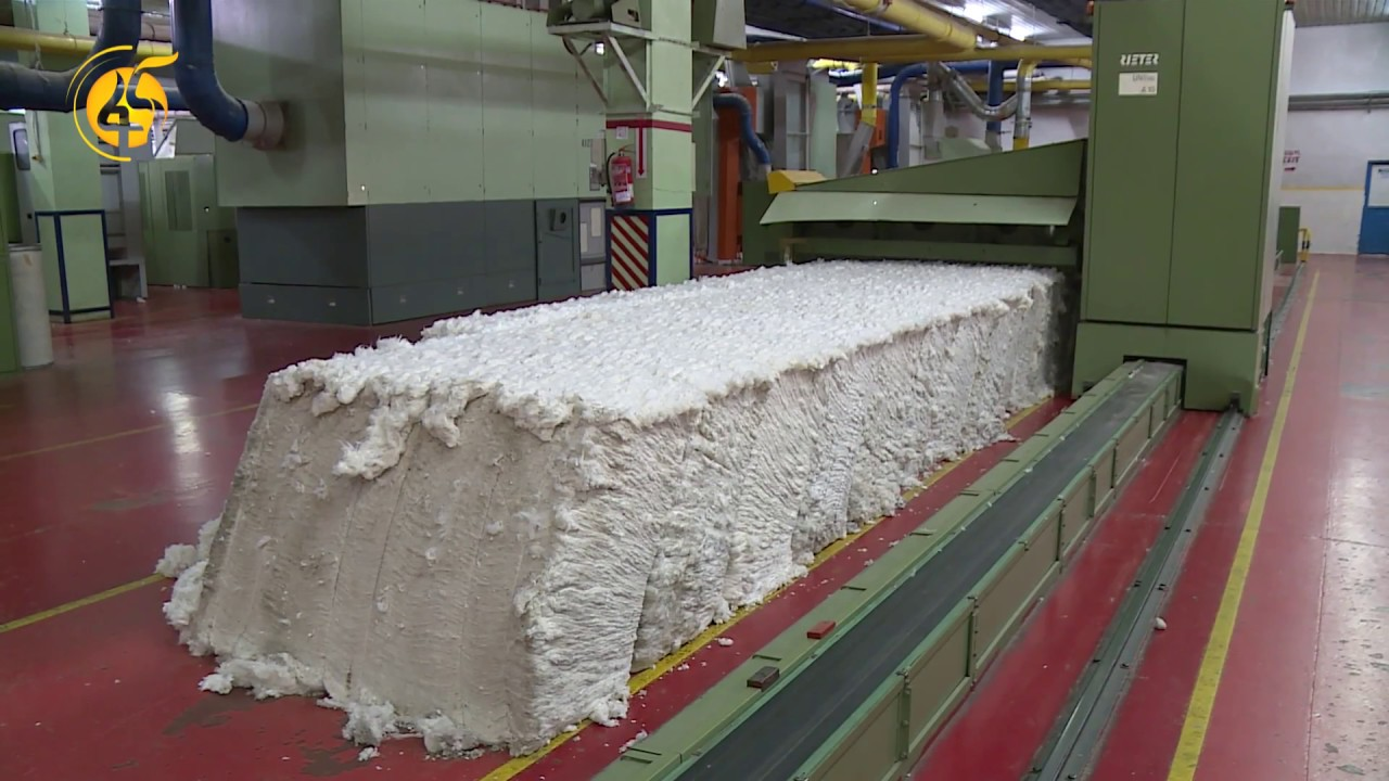 The Controversial Issue Of Ethiopian Cotton Producers And Buyers - የኢትዮጵያ የጥጥ አምራቾችና ገዢዎች ውዝግብ
