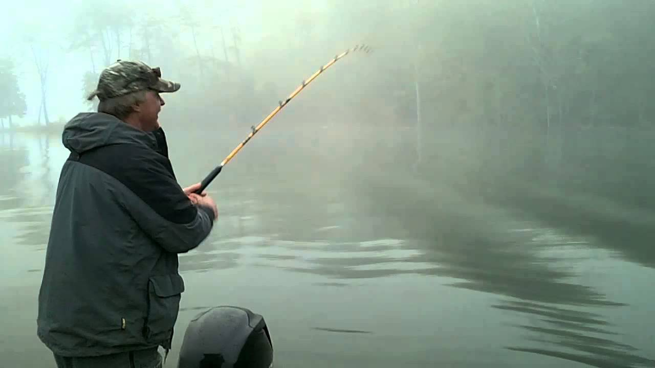 Striper fishing norris lake april 2013 youtube for Norris lake fishing report