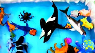 Learn Sea Animal Names Learn Colors For Kids Ocean Shark and Dolphin Toys