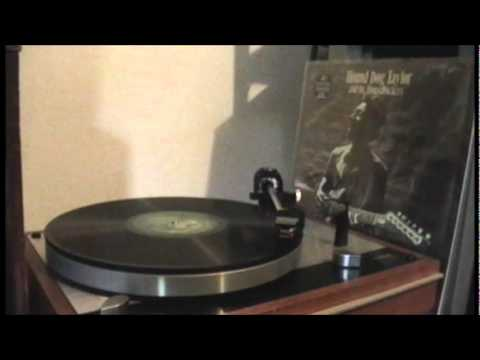 Hound Dog Taylor- She's Gone (Vinyl)