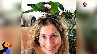 Half Naked Rescue Parrot Steals His Mom's Heart | The Dodo