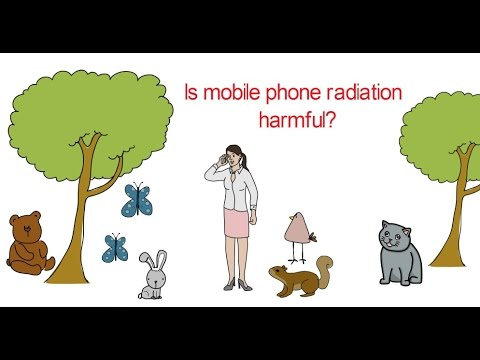 Is mobile phone radiation harmful?