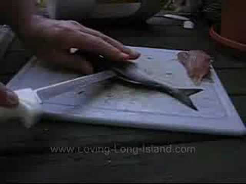 Snapper Fishing, Filleting, Cooking
