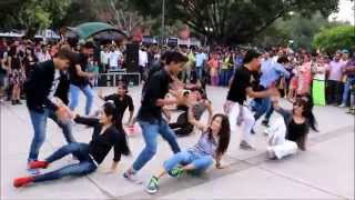 FLASHMOB | 17 SECTOR CHANDIGARH | THE DANCE MAFIA, RIPANPREET SIDHU