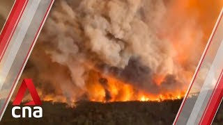 Australian wildfires: Are they going to get worse? Experts say yes