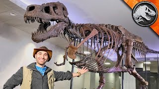 Jurassic World Explorers: WORLD'S BIGGEST T-REX! | Jurassic World