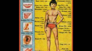 Human Body parts in Bengali  | Learn Bengali through Bengalipodcasts @Talkingbees.com
