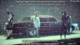 2NE1 (투애니원) - Missing you ( 그리워해요) MV Turkish Sub & Romanization Lyrics
