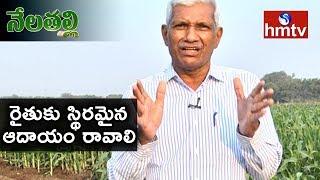 ఎలాంటి చర్యల ద్వారా రైతు ఆదాయం పెంచవచ్చు? Agriculture Expert Jaipal Reddy Exclusive Interview | hmtv