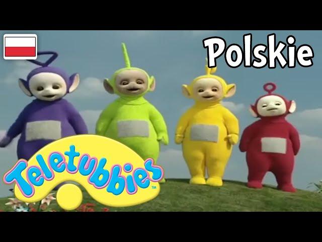 Teletubisie Po Polsku - 21 DOBRA JAKOŚĆ (Pełny odcinek)   Bajki dla dzieci   rodzinna zabawa