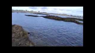 Wrasse fishing on Anglesey (2010)
