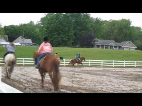 Girl Horses Girl Falling Off Her Horse at