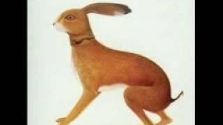 Watch Vashti Bunyan Hidden video