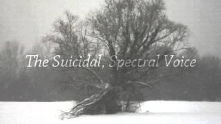 Watch Paradox Sadness video