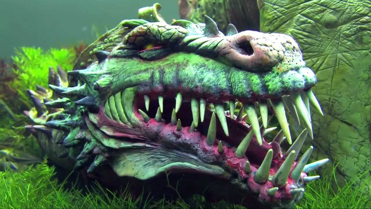 """Aquascaping by Oliver Knott- """"Dragon Hunter"""" at """"The Art ..."""