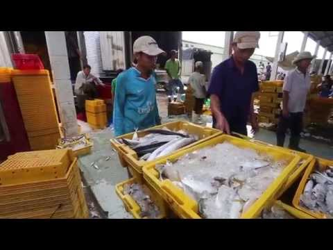 USAID Supports Responsibility and Sustainability in Asia's Fisheries