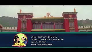 chehra kya dekhte ho |kumar sanu,asha bhosle|salaami1994 song|ayub khan