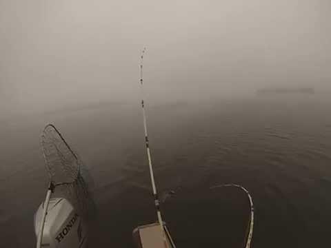 Lake Norman, Striper Fishing, January 12, 2014. Part A