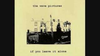 Watch Wave Pictures I Thought Of You Again video
