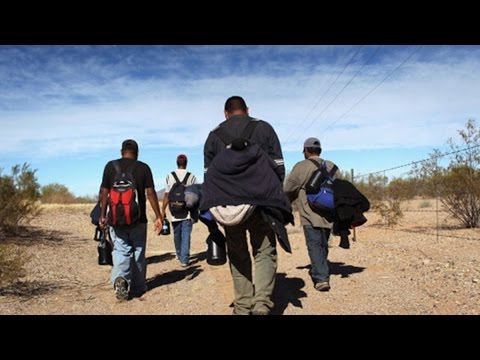 Judge Blocks Obama Immigration Action, What's Next?