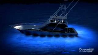 OceanLED TV - 'How to Light a Sportfish'