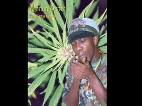 Marlon Asher - Ganja Farmer