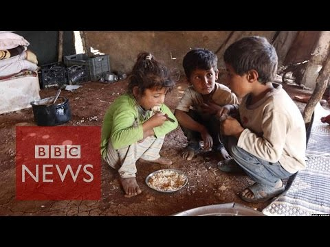 Top 1% 'own half global wealth' - BBC News