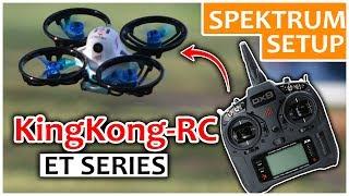 KingKong RC & Spectrum  BetaFlight Setup | Best Noob Drone Configuration