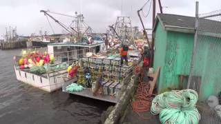 Southwest Nova Scotia Lobster Fishery