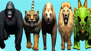 wild animals finger family song for kids | nursery rhymes,dinosaur,tiger,lion,toddlers,NASH TOON Tv