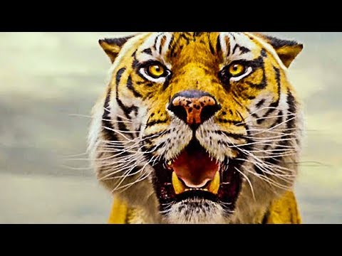 Life Of Pi - Official Trailer (hd) video