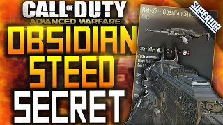 "GET THE ELITE ""BAL27 OBSIDIAN STEED""! (COD AW Obsidian Steed Alternative)"