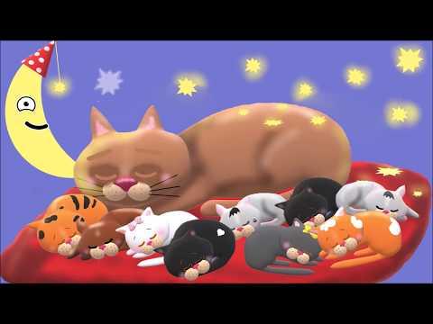 Baba-mama relaxáció - macskadorombolás (Baby-Mommy relax with purring cat)