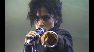 Prince - Sexuality (Official Music Video)