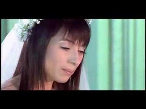 Sâu tím thiệp hồng - Phi Nhung