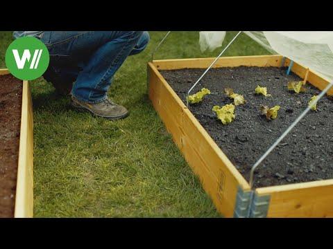 Samen vorziehen und Frühbeet anlegen - Anleitung vom Gartenprofi Josef Starkl